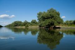 Het deltalandschap van Donau Stock Foto's