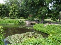 Het dendrological park van Alexandrië in de Oekraïne Royalty-vrije Stock Afbeelding