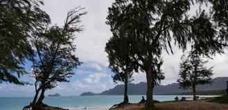 Het denken over het strand Hawaï stock afbeeldingen