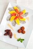 Het dessert van de luxe met chocolade en vruchten royalty-vrije stock fotografie