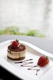 Het dessert van Tiramisu royalty-vrije stock foto's