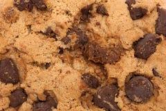 Het detail van chocoladechip cookie Royalty-vrije Stock Foto