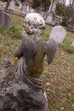 Het Detail van de cherubijngrafzerk Royalty-vrije Stock Foto
