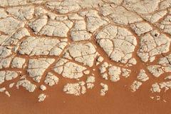 Het detail van de grond van een droge pan, Sossusvlei, woestijn Namib Stock Afbeeldingen