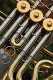 Het detail van de hoorn Stock Fotografie