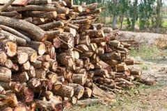 Het detail van de houtclose-up royalty-vrije stock fotografie