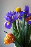 Het detail van het de lenteboeket met tulpen en irissen royalty-vrije stock afbeelding
