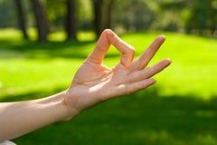 Het detail van de meditatie stock foto's