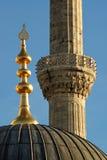 Het Detail van de moskee Stock Fotografie