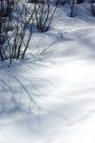 Het detail van de sneeuw Stock Afbeeldingen