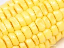 Het detail van de suikermaïs Stock Foto's