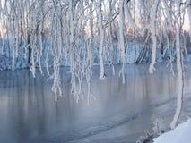 Het detail van de winter royalty-vrije stock afbeeldingen