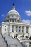 Het Detail van het Capitool van de V.S. Stock Afbeeldingen