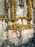 Het detail van het Capitulovenster Stock Foto's