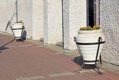 Het detail van het gebouw met potten van bloemen Stock Fotografie