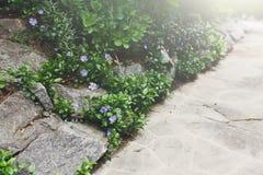 Het detail van het landschapsontwerp, de wegclose-up van de de zomertuin stock foto's