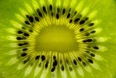 Het detail van Kiwifruit Royalty-vrije Stock Afbeelding