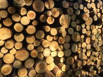 Het detail van stapel van vers gesneden hout opent zonneschijn het programma - registreren, bosbouwachtergrond stock afbeeldingen