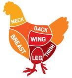 Het diagram van kippenbesnoeiingen Stock Foto