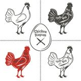 Het diagram van kippenbesnoeiingen Stock Afbeeldingen