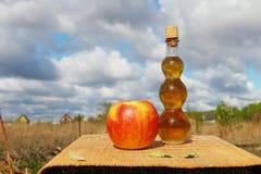 Het dieet van de appel Stock Foto's