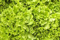 Het dieet van de het fruitgroente van de de lentezomer detox Sluit omhoog van oogststapel Supermarkttribune van schone en glanzen stock afbeelding
