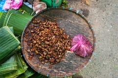 Het dienblad van stinkt insecten, Laos Royalty-vrije Stock Fotografie