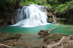 Het diepe forestHuay Nationale Park van de waterval van Mae Kamin Stock Foto's