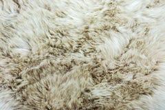 Het dier viel textuur achtergrondff Stock Foto
