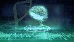 Het digitale hersenen en DNA-schroef roteren vector illustratie