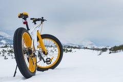 Het dik-gereden model van de sneeuwfiets; fietssport Stock Fotografie
