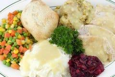 Het Diner van de dankzegging met zich Turkije en het Kleden Royalty-vrije Stock Foto