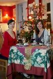 Het diner van Kerstmis royalty-vrije stock foto's