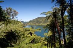 Het District van de Meren van Rotorua stock afbeelding