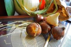 Het document van close-up Nederlandse Tulip Bulbs zakachtergrond Royalty-vrije Stock Foto's