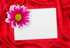 Het document van de groet kaart en bloem op rode doek Stock Foto