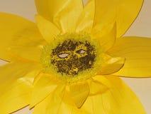 Het document van de zonbloem steunen van het de schoolkunstwerk van masker de gele jonge geitjes royalty-vrije stock afbeelding
