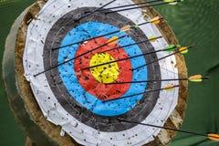 Het doel van het boogschieten met pijlen Stock Foto