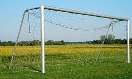 Het doel van het voetbal op bloeiende weide Stock Foto's