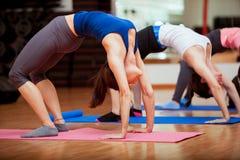 Het doen van wat yoga bij de gymnastiek Stock Afbeeldingen