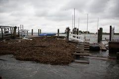 Het dok blijft Zandig na Orkaan Stock Fotografie