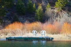 Het dok van de oever van het meer Stock Foto's