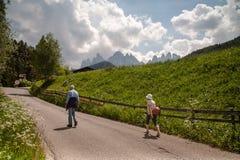 Het Dolomiet, Noordelijk Italië stock foto's