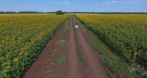 Het donkerbruine meisje met schitterend krullend haar in witte korte sundress loopt langs landelijke weg tussen twee schildergebi stock footage