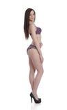 Het donkerbruine schoonheid stellen in lingerie Stock Foto's