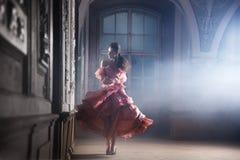 Het donkerbruine stellen van de schoonheid Stock Foto
