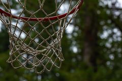 het donkere bos plaatsen met rode basketbalhoepel op donkere dag stock fotografie