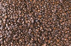 Het donkere geroosterde gehele behang van koffiebonen Stock Foto