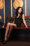 Het donkere Haired Model van de Lingerie Stock Fotografie