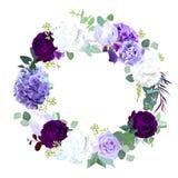 Het donkere viooltje en purper nam, witte en lilac hyrangea, iris, auto toe royalty-vrije illustratie